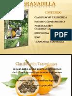 taxonomaymorfologagranadilla-130403161142-phpapp02