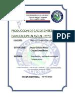 Informe de La Obtencion de Gas de Sintesis