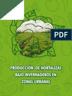 El-Taller-Sistematizacion Invernaderos en Zonas Urbanas