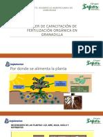 Material Capacitacion fertilizacion granadilla.pptx