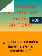 lossistemascirculatoriosenlosanimales-121012103439-phpapp01