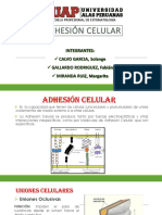 adhesincelular-150608022936-lva1-app6892