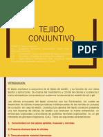 Tejido Conjuntivo (2) Final-1517971815(1)