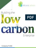 About Efficient Carbon
