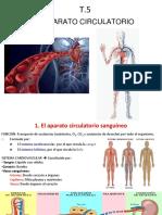T.5.-Aparato-circulatorio