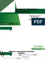 TIROIDES TERMINADOS