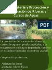 Proteccion riberas2012.pptx