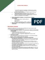 ESTRUCTURAS SIMPLES.doc