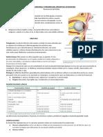 Celulitis Orbitaria y Periorbitaria pediatría