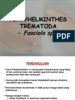1_Trematoda_Fasciola