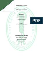 Cadenas Epidimiologica