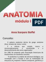 Anatomia Introdução