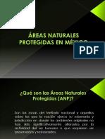 ÁREAS NATURALES PROTEGIDAS EN MÉXICO.pptx