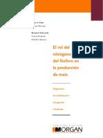 3.- El Rol Del Nitrogeno y El Fosforo