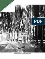 Um ato cerimonial do kula – Os argonautas do pacífico ocidental