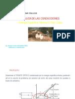 flujo_critico.pdf