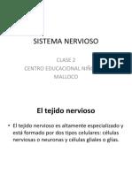 Sistema Nervioso Clase 2 3º Medio