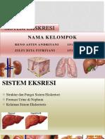 SISTEM EKSKRESI fiix.pptx