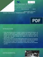 359025903-Transporte-carretero-pptx.pptx