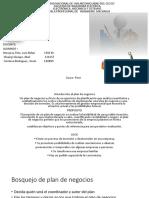 Introduccion Plan de Negocios Doc. Cardenas
