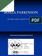 251928806-Boala-Parkinson.pdf
