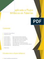 Presentacion_Seminario Fem Japv