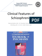 Clinical Features of Schizophrenia MkII