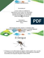 Diapositivas El DENGUE