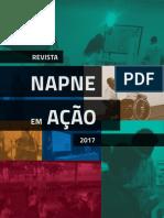 RevistaNapne2017_V3-1