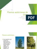 Plantas_autctonas_de_Chile.pdf