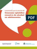 0000000878cnt Lineamientos Consumo Alcohol 2016