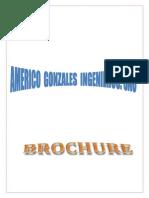 brouchure americo gonzales.pdf