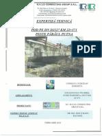 Expertiza pod pe DJ127 km 22+571 peste raul Putna