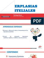 4 SESION-HIPERPLASIAS EPITELIALES.pdf