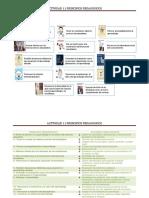 Actividad 11 Principios Pedagogicos