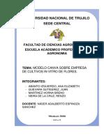 CARATULA-canvas.docx