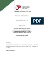 Experimental Trabajo Grupo (1) (1)