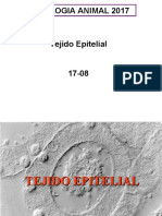 T2EPITELIAL