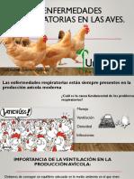 Enfermedades Respiratorias en Las Aves