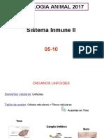 T2InmuneII