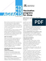 Sheep Vaccination Programs