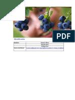 152479024 Analisis Externo Del Mercado de La Pulpa