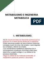 12.METABOLISMO.1
