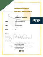 INFORME DE MINERALES.docx