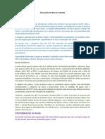 contaminacion en rio de janeiro brasil.docx