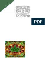 Uso de La Marihuana