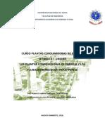 p.c.e y Los Fluidos Energeticos Industriales-Version 2