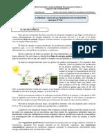 Flujo de Energia y Ciclo de La Materia en El Ecosistema-2018