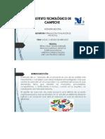 Estudio de Mercado Diapositivas Word