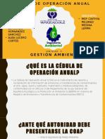 Cédula de Operación Anual